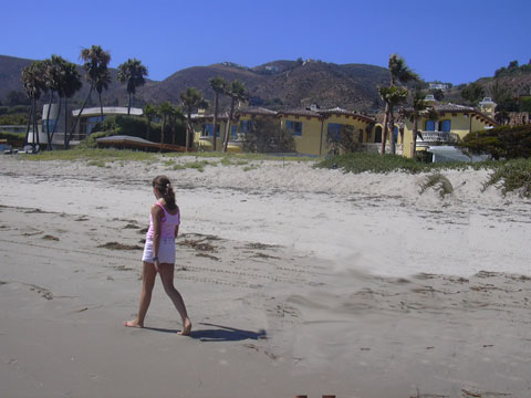 Enjoying in SANTA MONICA Beach - California